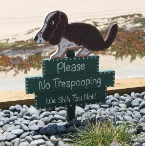 Do Not Let Your Dog Poop!