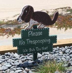 Do Not Let Your Dog Poop!