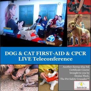 Dog & Cat First Aid & CPR