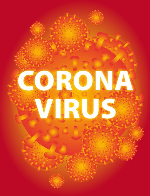 Can My Pet Transmit Coronavirus?